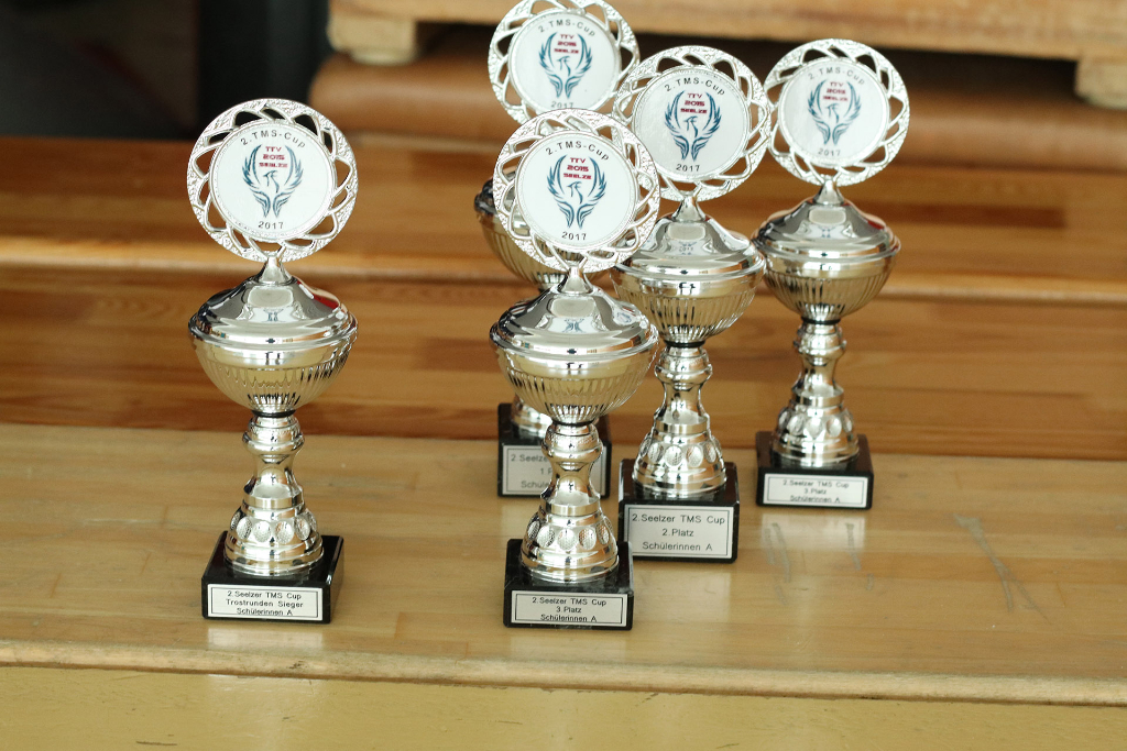 2. Seelzer TMS CUP 2017